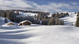 Alpe di Siusi 2014-02-11 127