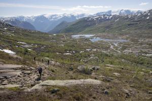 Norwegia 2016-06-08 738