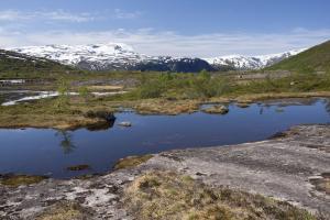 Norwegia 2016-06-09 977