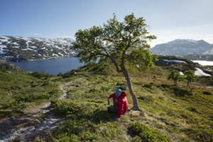 Norwegia, jez Stavatn 07-06-2018