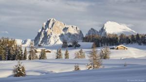 Alpe di Siusi 2014-02-11 153