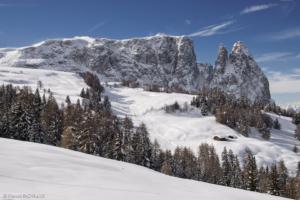 Alpe di Siusi 2014-02-12 163