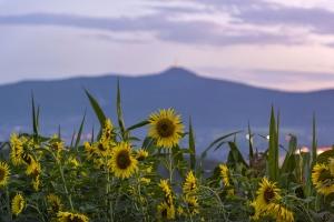 Liberec 2017-07-29 panorama1